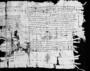 31327: papyrus