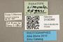 3130360 Limonia edgari PT labels IN