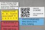 3130382 Insulatitan watsoni HT labels IN