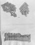 174015: cotton, pigment textile fragmen