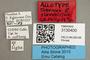 3130400 Tabanus flavohirtus AT labels IN