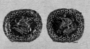 173414: textiles