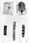 31535: Roman and Coptic textile