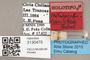 3130479 Metadonylas fuscitibiae HT labels IN