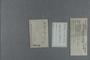 P 11031 label