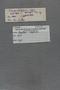 P 18188 label