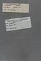 P 18202 label