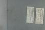 P 8218 label