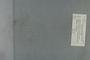 P 9174 label