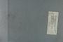 P 9175 label