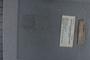 PE 2094 label