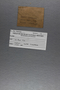 IMLS Silurian Reef Digitization Project, Image of a Silurian specimen label