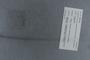 PE 78728 label