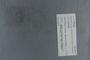 PE 78736 label