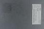 PE 78738 label