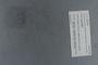 PE 78743 label