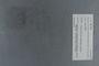 PE 78746 label