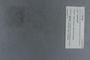 PE 78748 label