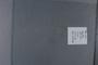 PE 78962 label