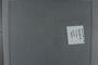 PE 79055 label