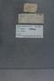 PE 79300 label
