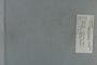 PE 80528 label