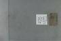 PE 80537 label