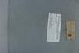PE 80614 label