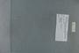 PE 80688 label