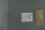 UC 17945 label