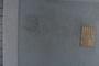 UC 1940 label
