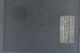 UC 23380 label