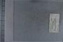 UC 25590 label