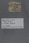 UC 57209 label