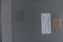 UC 893A label
