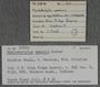 IMLS Silurian Reef Digitization Project, Image of a Silurian brachiopod label PE 27870
