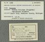 IMLS Silurian Reef Digitization Project, Image of a Silurian specimen label PE 5589