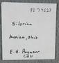 IMLS Silurian Reef Digitization Project, Image of a Silurian specimen label PE 77623