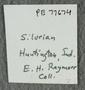 IMLS Silurian Reef Digitization Project, Image of a Silurian specimen label PE 77674