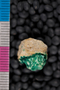 IMLS Silurian Reef Digitization Project