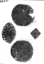 110869: Roman and Coptic textile