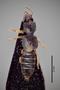 3048476 Bledius quadricornis ab javanus HT d IN
