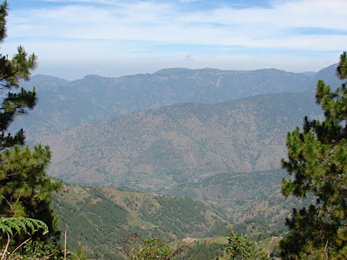 Sparse pine forest is present over much of the southern Central Cordillera, where the mountains are steep and are burned frequently. View from Mt. Pulag, toward Atok and the Halsema Highway, 1500-2300m, Benguet Province, Luzon [Copyright] The Field Museum