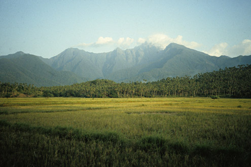The water that irrigates riceland in many parts of the Philippines originates in nearby steep mountains where rainfall is two to four times greater than in the lowlands. Near Tampayan, Sibuyan Island. (c) Field Museum of Natural History