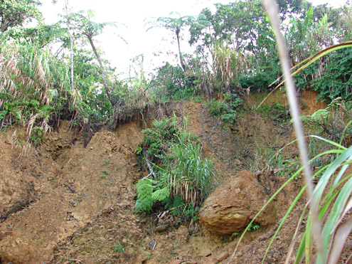 Where watersheds are not protected, erosion often takes place quickly and severely. Saddle Peak, Camarines Sur Province, Luzon. [Copyright] The Field Museum