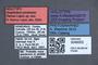 3048002 Scaphidium peckorum HT labels IN