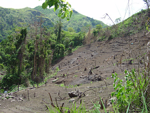 Impoverished farmers without access to productive land in the lowlands often attempt to grow crops in unsustainable situations. Mungiao Mountains, Quirino Province, Luzon. (c) The Field Museum