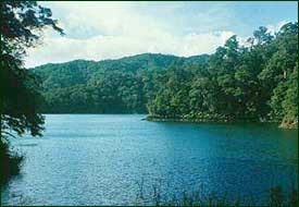 The moist tropical climate resulted in luxuriant rain forest that once covered at least 95 percent of the Philippines, harboring one of the highest densities of unique species anywhere on the earth. Lake Balinsasayo (above) is one of the most beautiful places on Negros Island.  (c) Field Museum of Natural History - CC BY-NC