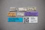 3048490 Bledius splendens ST labels IN