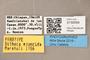 3130599 Bitheca ejuncida PT labels IN
